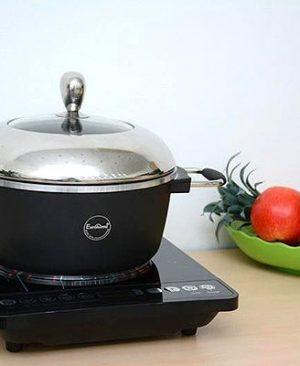 Bếp từ Eurosun EU-T185